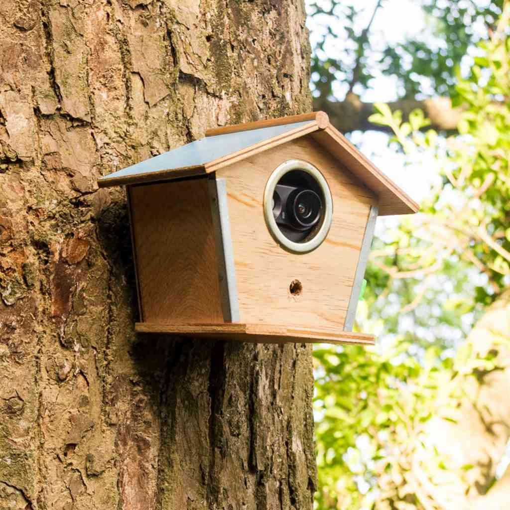 hide outdoor camera